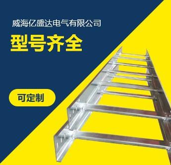 梯式大跨距桥架